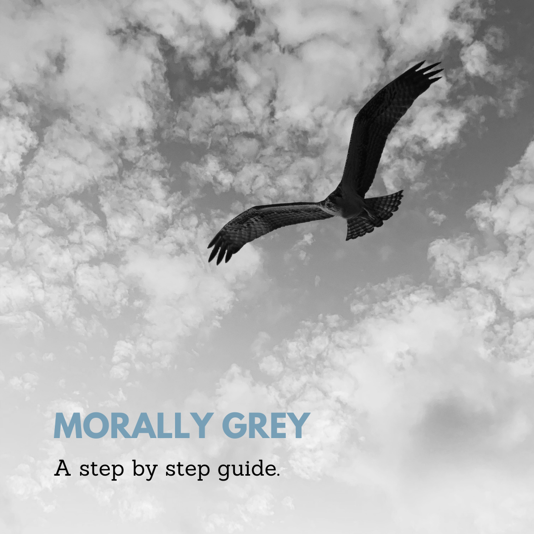 Morally grey characters a step by step guide. Black bird on grey sky.